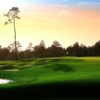 A view of a green protected by a collection of tricky bunkers at National Golf Club of Louisiana