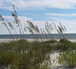 Sugar Sand beaches - Alabama Gulf Shores
