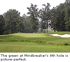 Mindbreaker's 8th Hole