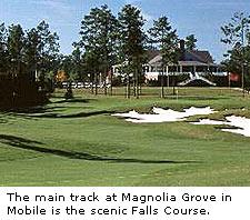 Magnolia Grove